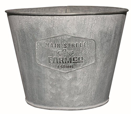 The Best Galvanized Metal Tire Planter Review