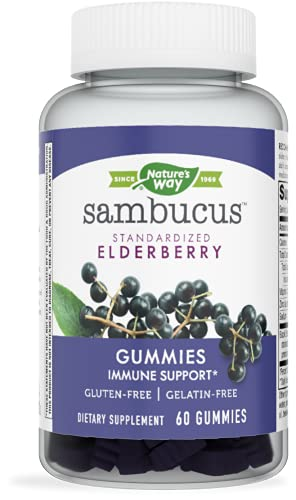 Best Immune Power Protein Review