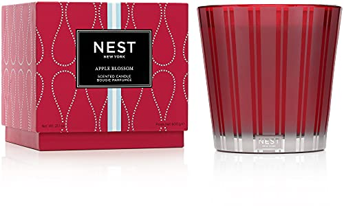 The Best Nest Blue Garden Candle Review