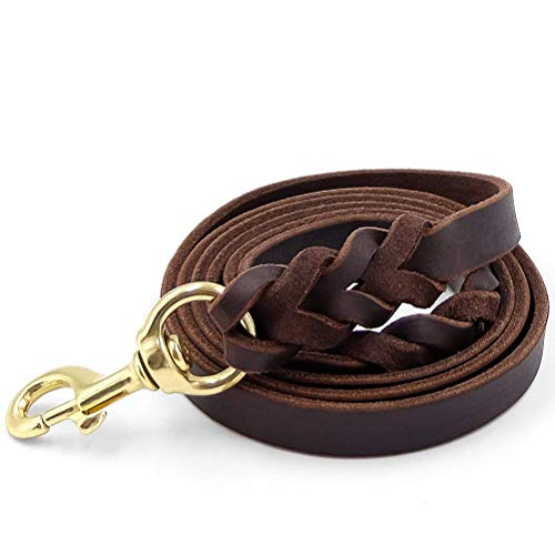 Best Rated Leather Dog Leashes Review