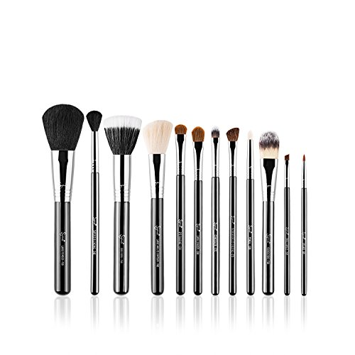 The Best Sigma Face Brushes Review